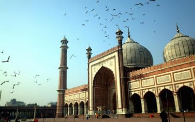 Delhi My Underworld